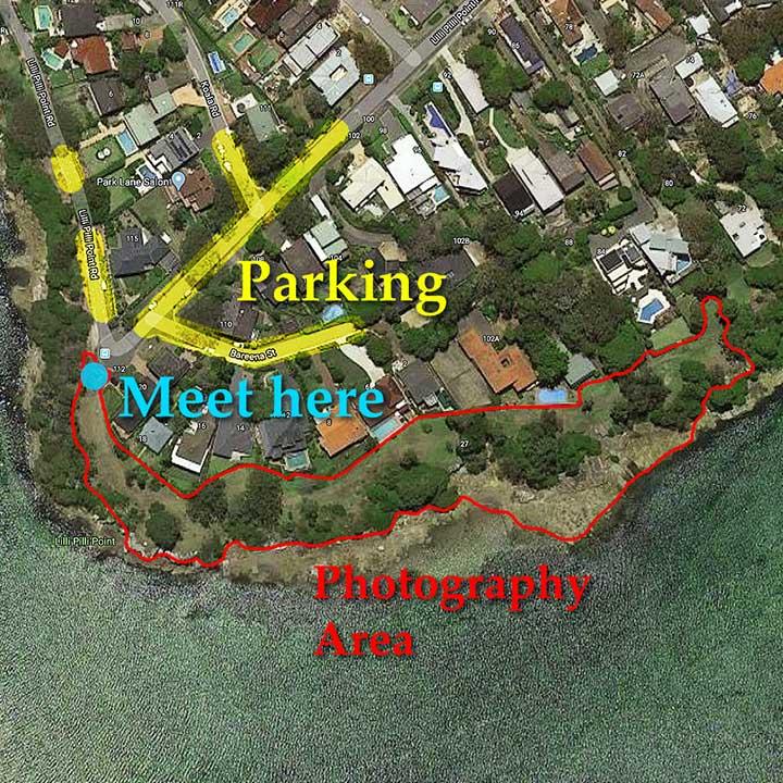 Sutherland Shire Family Photography & Wedding Portrait Location - Lilli Pilli Point Reserve